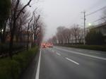 霧の朝の風景(その1)